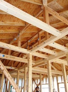 201201142F屋根を見る.jpg